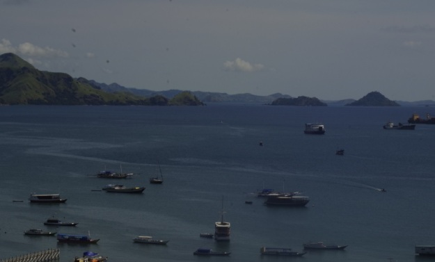 entering labuan bajo4