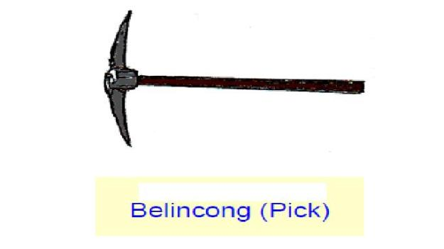 BELINCONG