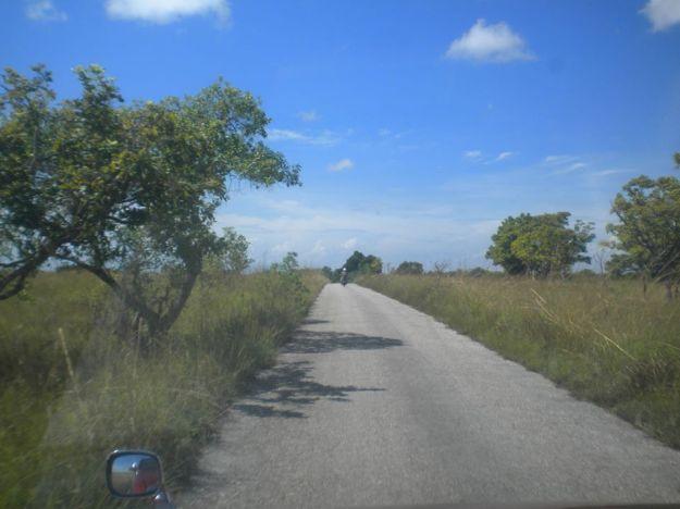jalan ditengah sabana1