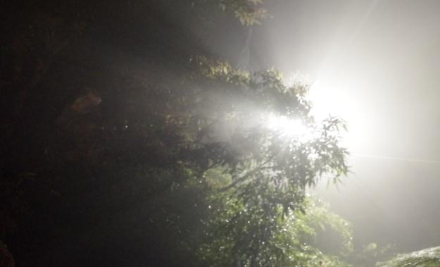 seberkas cahaya 3