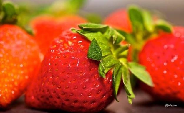 buah yang terbuang