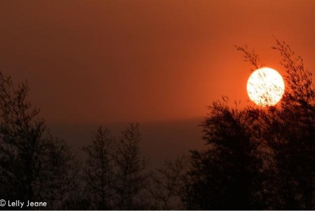 matahari dan bamboo 3