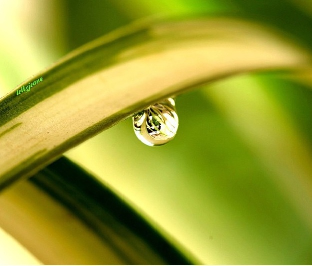titik air