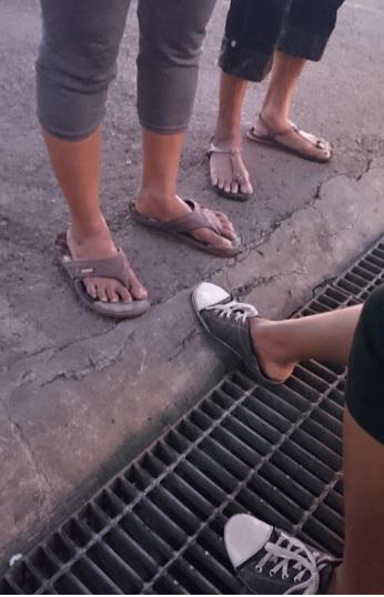 kaki 7