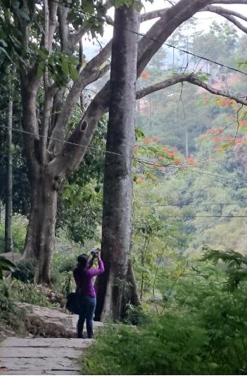 Mengambil Foto1