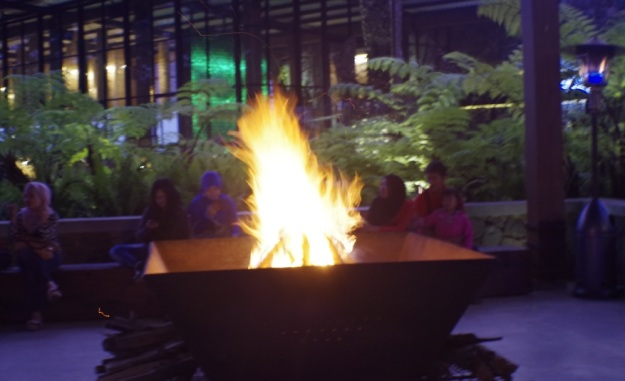 api unggun1