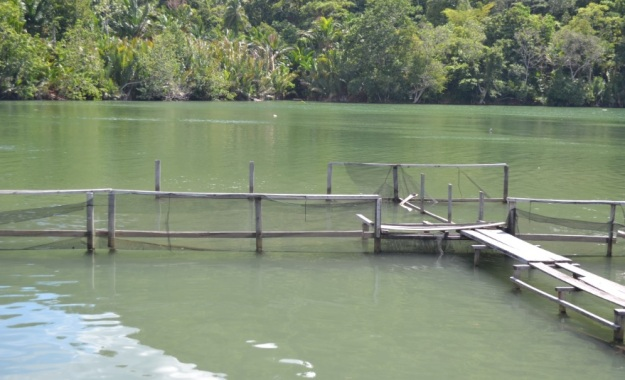 danau distrik depapre7