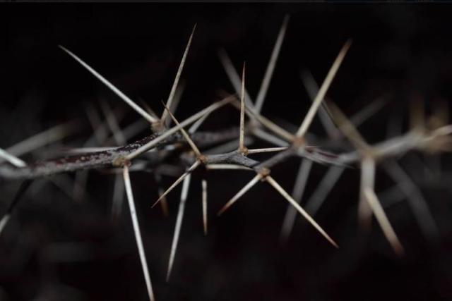 Duri Dalam Daging A Thorn In The Flesh Pembangunan Menerangi Dan Mencerdaskan