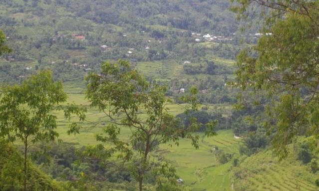 panrama manggarai 5