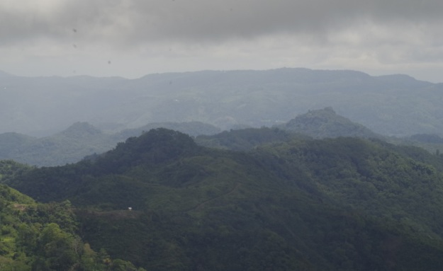 panrama manggarai 8