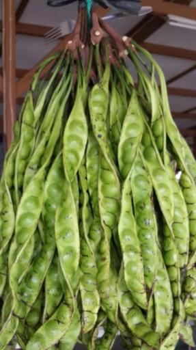 Indonesian Food2