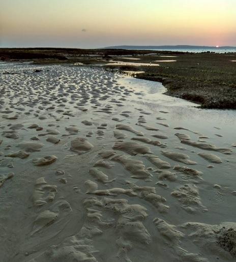 sand castling2
