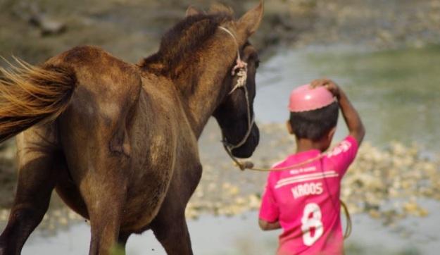 anak kecil dan kudanya1