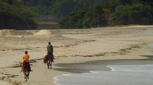 anak kecil dan kudanya2
