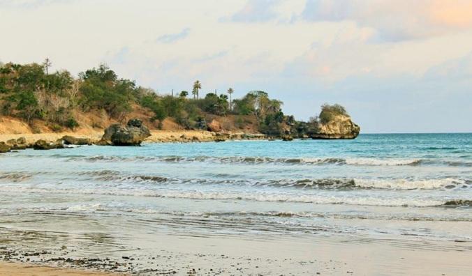 pulau semau1