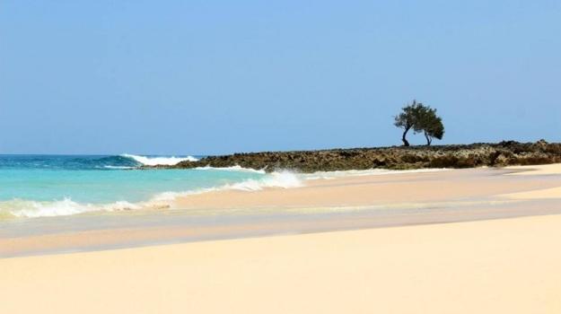 Pulau Semau