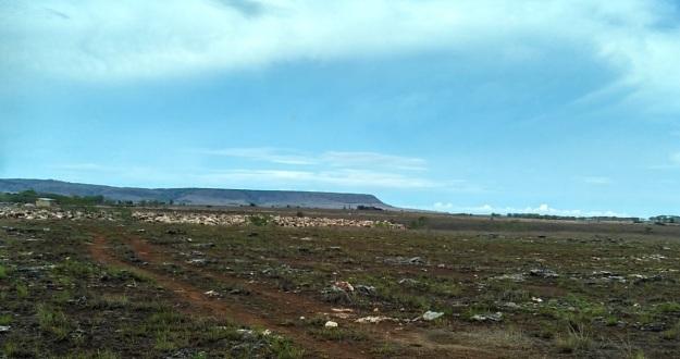 lahan luas