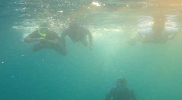 bawah laut kupang barat22