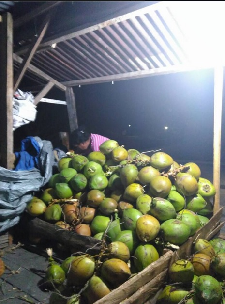 jagung bakar kelapa muda4