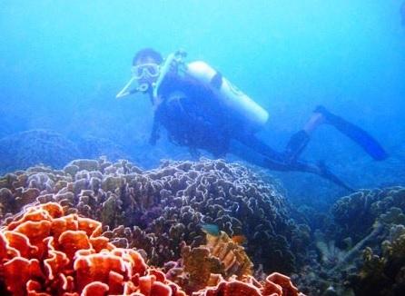 under water5