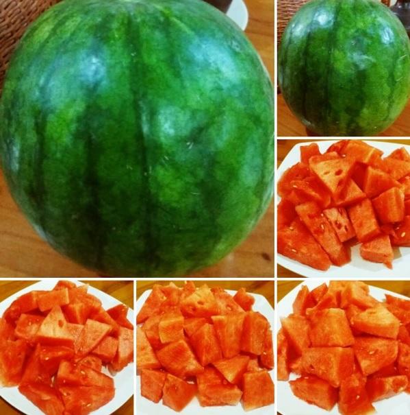 semangka-indonesia