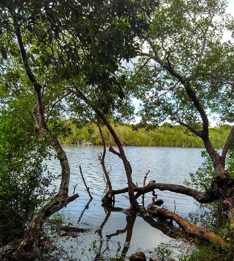 danau-tuakdale4