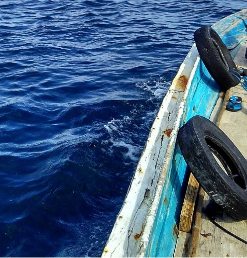semau-sea-3
