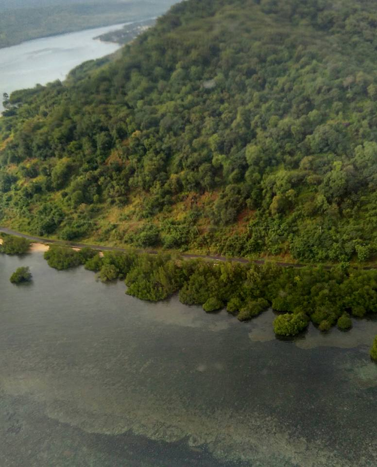 Larantuka from air 1