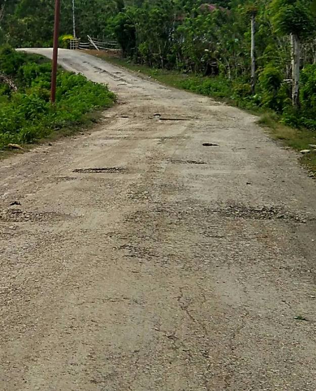 Road to lelogama1