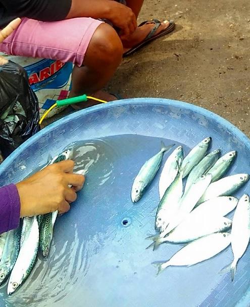 Pasar Ikan Baa1