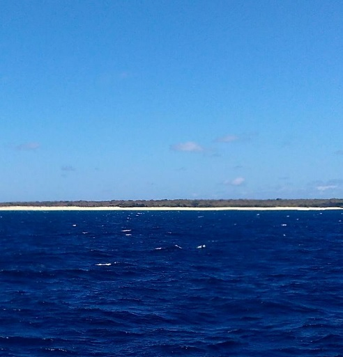 pemandangan dengan kapal cepat Rote Kupang5