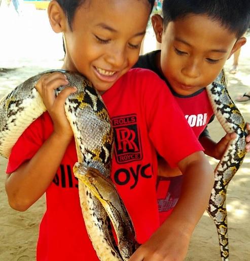 pulau penyu Bali5