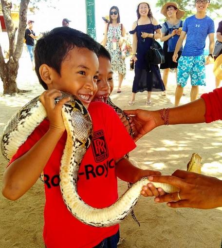 pulau penyu Bali6