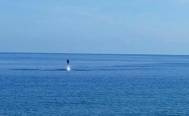 lumba - lumba di wini 6