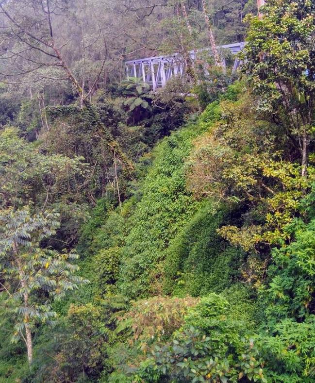 Jembatan di daerah pedesaan