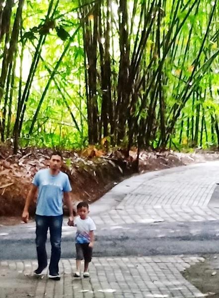 Hutan Bamboo Buungan Bangli 2