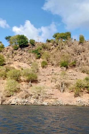 Pulau Pura 4