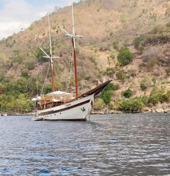 Pulau Pura 7