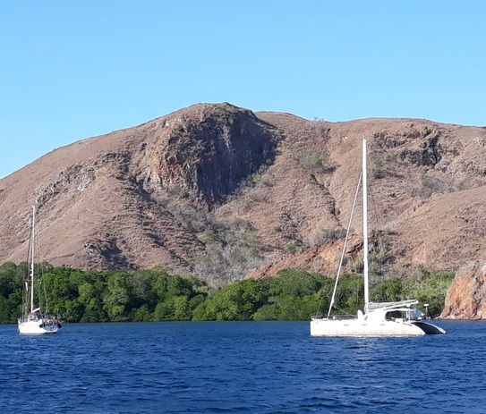Pulau Rinca Labuan Bajo 3