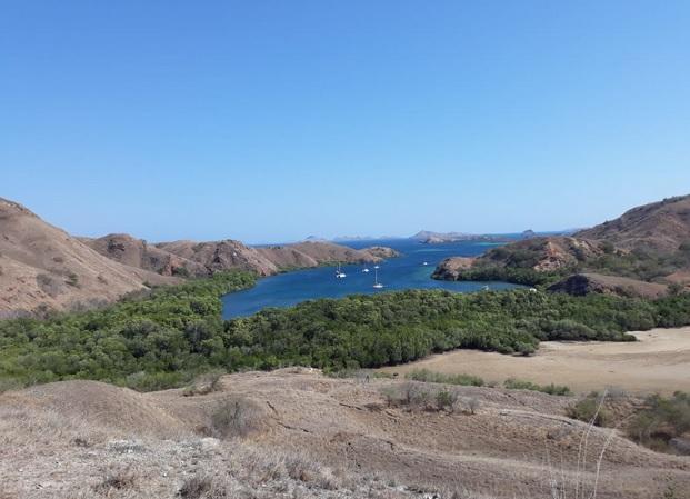 Pulau Rinca Labuan Bajo 7