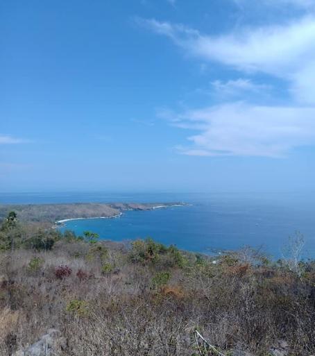 Tanjung Margetha Alor 5